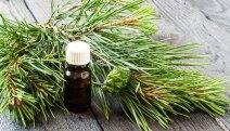 pine-essential-oil-1523384775-lb